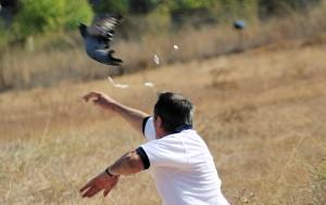 tiro-palomas-a-brazo